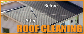 chemicalroofcleaning